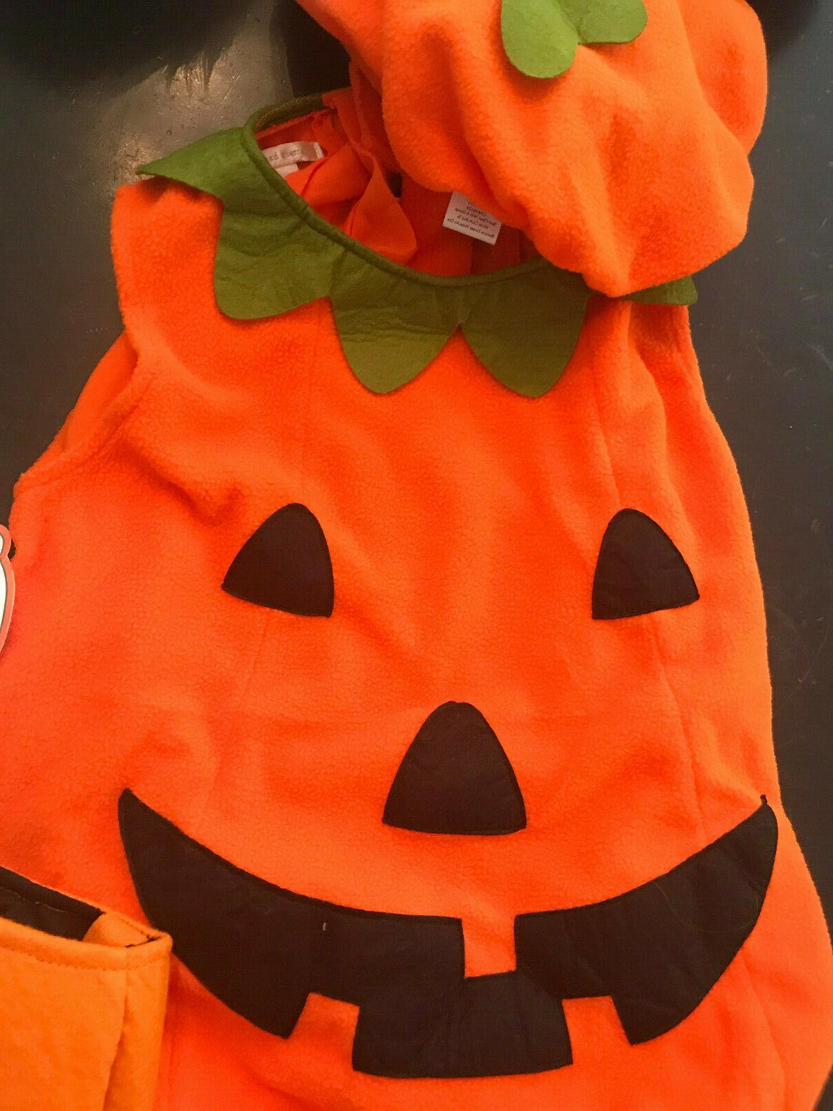 Pottery Barn Kids Pumpkin Costume Hat & Treat Bucket NEW 4-6